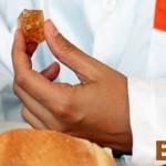 proyecto plastico biodegradable para bolsas con restos panaderia